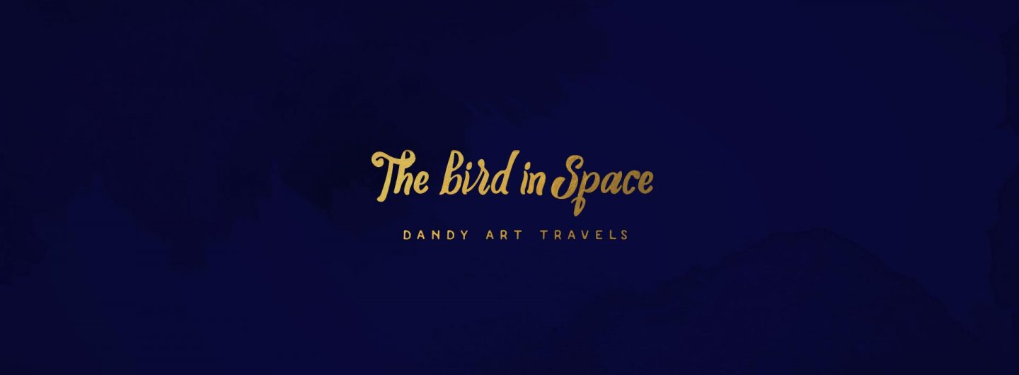 The Bird in Space